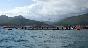 Impresa di piscicoltura nel mare di tirreno Fotografie Stock Libere da Diritti
