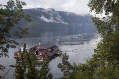 Impresa di piscicoltura norvegese Immagini Stock