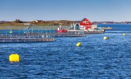 Impresa di piscicoltura norvegese per la crescita di color salmone Immagine Stock Libera da Diritti