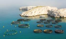Impresa di piscicolture sull'isola di Frioul vicino a Marsiglia fotografie stock libere da diritti
