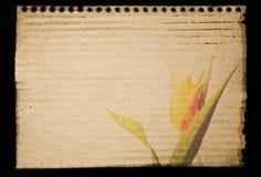 Impresión de la libreta en la cartulina Fotografía de archivo