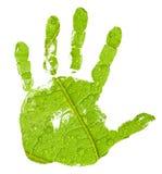 Impresión de la mano en fondo verde de la hoja Fotografía de archivo libre de regalías