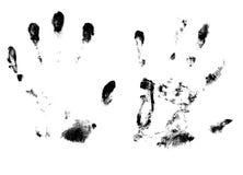 impresión de la palma Fotos de archivo libres de regalías