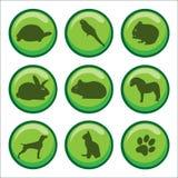 Impresión de la pata de los animales domésticos de los botones del Web