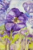 Impresión de violetas en un campo Foto de archivo libre de regalías