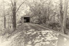 Impresión del albumen - puente cubierto de Colville imagen de archivo libre de regalías