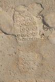 Impresión del calzado en la arena Foto de archivo