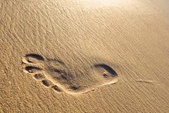 Impresión del pie del hombre en una playa blanca de la arena Imagenes de archivo