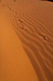 Impresión del pie en la arena imágenes de archivo libres de regalías