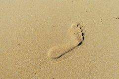 Impresión del pie en la arena Imagen de archivo