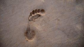 Impresión del pie en la playa Fotografía de archivo