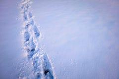 Impresión del pie en nieve Imágenes de archivo libres de regalías