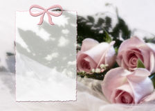 Impresión delicada y soñadora de Rose Imagen de archivo