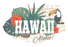 Impresión exótica tropical de Hawaii del vintage para la camiseta libre illustration