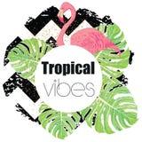 Impresión exótica tropical del verano con las hojas de palma y el flamenco Fotografía de archivo