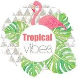 Impresión exótica tropical del verano con las hojas de palma y el flamenco Fotos de archivo libres de regalías