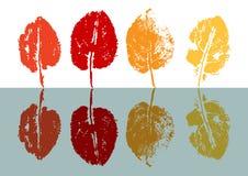 Impresión multicolora de las hojas de otoño, Fotografía de archivo