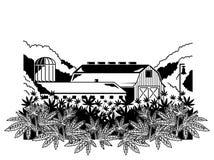 Impresión natural de la granja del cáñamo stock de ilustración