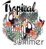 Impresión tropical con lema en vector Imagen de archivo