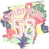 Impresión tropical con los flamencos y número en vector Imagenes de archivo