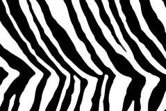 Impresión animal Foto de archivo