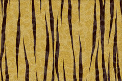 Impresión del tigre Fotos de archivo libres de regalías