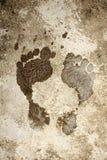 Impresión mojada del pie Imagen de archivo