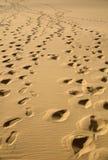 Impresiones 1 del pie Foto de archivo libre de regalías