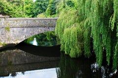Impresiones de corcho, Irlanda Imagenes de archivo