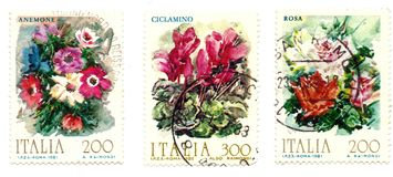 Impresiones de flores Foto de archivo libre de regalías