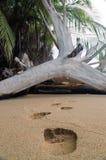 Impresiones de la arena Foto de archivo libre de regalías