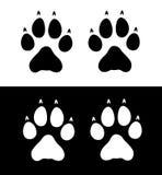 Impresiones de la pata del lobo Imagen de archivo