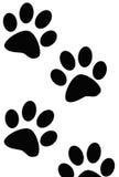 Impresiones de la pata del perro o del gato Imágenes de archivo libres de regalías