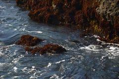 Impresiones de la playa de cristal de Fort Bragg a partir del 28 de abril de 2017, California los E.E.U.U. imagen de archivo