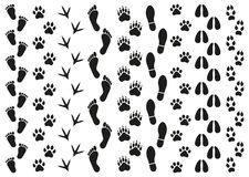 Impresiones de rastros de gente y de animales en un fondo blanco ilustración del vector