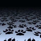 Impresiones del perro Imagenes de archivo