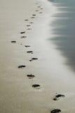 Impresiones del pie Foto de archivo libre de regalías