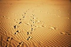 Impresiones del pie de la arena que brillan intensamente Fotografía de archivo libre de regalías