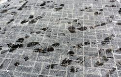 Impresiones del pie en el pavimento nevoso Imagen de archivo libre de regalías