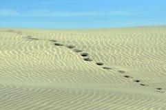 Impresiones del pie que pasan una duna de arena. Foto de archivo