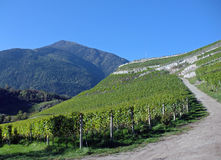 Impresiones del Tyrol del sur Fotografía de archivo libre de regalías