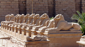 Impresiones Egipto de junio de 2013 Fotografía de archivo libre de regalías