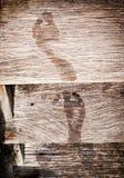 Impresiones mojadas del pie Fotos de archivo