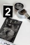 Impressão digital Fotos de Stock Royalty Free