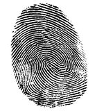 Impressão digital perfeita do polegar Foto de Stock