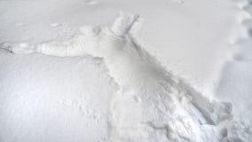 : Impressão humana na neve Imagem de Stock