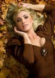 Impressões do outono Imagem de Stock Royalty Free