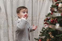 Impressed by the Christmas tree. A little child impressed by his first time wdecorating the Chirstmas tree Royalty Free Stock Image