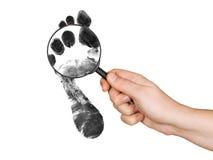 impression de agrandissement de main en verre de pied Image libre de droits