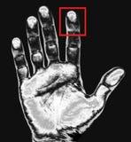 Impression de main Images libres de droits